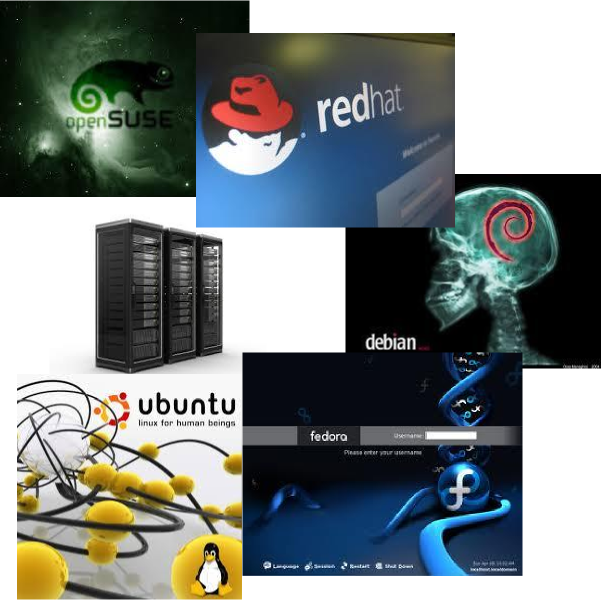the different flavors of linux Try the below command it worked for me cat /proc/version once you know  that you are running red hat for example, you can get to the.